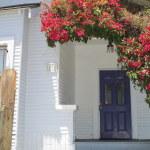 front with door